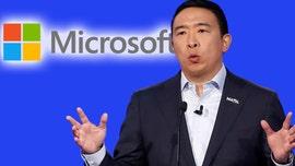 Andrew Yang knocks Microsoft's search engine during Dem debate: 'Sorry...it's true'