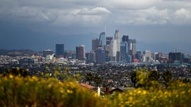 Los Angeles City Council halts 'no-fault' evictions ahead of statewide rental controls, reports say