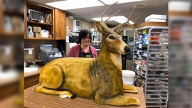 Bride and groom request wedding cake modeled to look like life-size deer