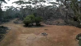 Missing Australian woman found in outback after 'SOS' message is spotted on security camera