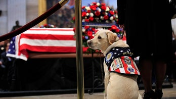 Service dog program commissions statue of late George H.W. Bush's dog Sully