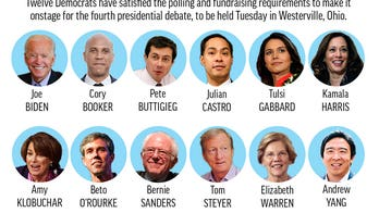 David Bossie: 7 Democratic debate takeaways after watching candidates caught up in Trump Derangement Syndrome
