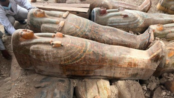 20 ancient wooden coffins discovered in Egyptian necropolis