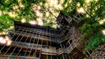 'World's tallest treehouse' in Tennessee burns to the ground in just 15 minutes