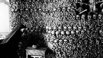 Ancient DNA puts Black Death's origin in Russian region