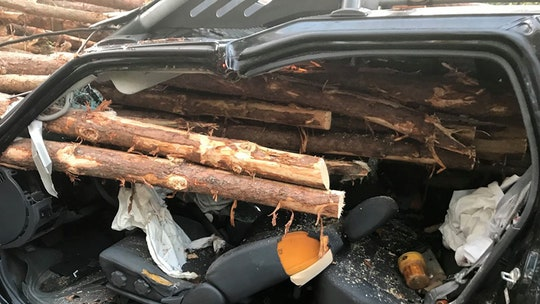 Georgia driver escapes with 'minor' injuries after logs impale car