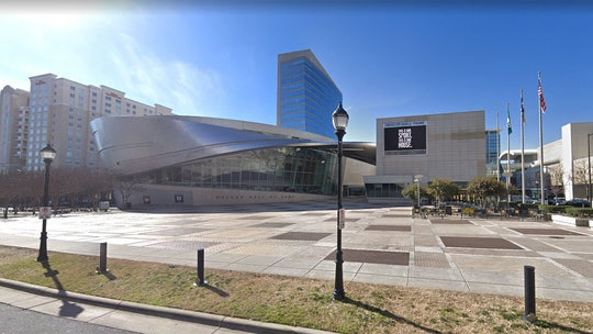 The big one? 300 birds mysteriously crash into NASCAR Hall of Fame