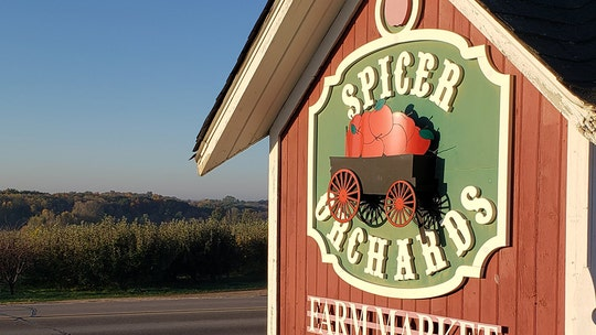 Thieves steal 22,000 apples from Michigan orchard: report