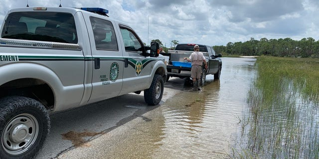 The FWC says they launched a sting operation after receiving a tip back in February 2018