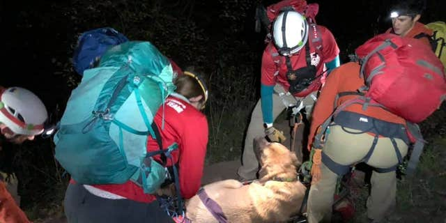"""Rescuers in Salt Lake City said Floyd """"was not able to move"""" after he hiked two miles upGrandeur Peak Hiking Trail in Millcreek Canyon."""