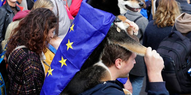 A demonstrator carries his dog, draped in EU flag, during anti-Brexit protest in London, Saturday, Oct. 19, 2019.