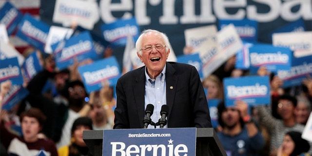 Democratic 2020 U.S. presidential candidate Senator Bernie Sanders holds a campaign rally in Detroit, Michigan. (REUTERS/Rebecca Cook)
