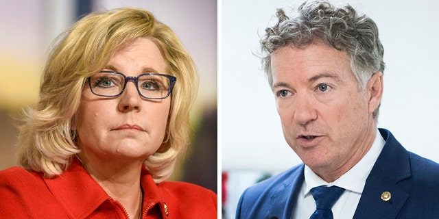 House GOP Conference Chairwoman Liz Cheney, R-Wyo., engaged in a new Twitter war with Sen. Rand Paul, R-Ky., amid the death of Islamic State leader Abu Bakr al-Baghdadi. (Getty, File)