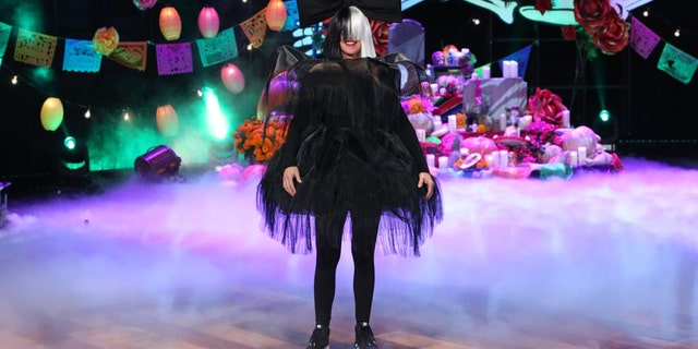 Ellen DeGeneres dressed as the Australian singer-songwriter Sia in 2016.