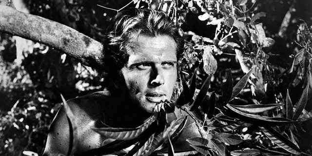 American actor Ron Ely plays the title role in an episode of the US TV series 'Tarzan', circa 1967.