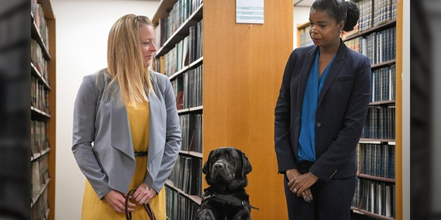 Hatty the labrador was sworn in on Tuesday. (State's Attorney Kim Foxx)