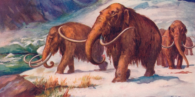 The early Ice Age, when mammoths roamed the Earth. From Harmsworth History of the World, Volume 1, by Arthur Mee, J.A. Hammerton, & A.D. Innes, M.A.