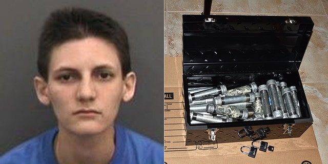 Mugshot for Michelle Louise Kolts, 27, of Wimauma, Fla., who was arrested authorities said after her parents found two dozen pipe bombs in her bedroom.<br><br>