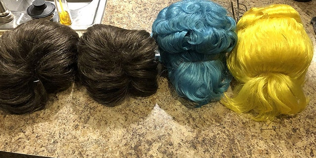 An image of the wigs reportedly stolen from Disney World.