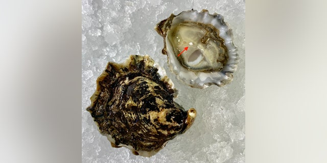 The rare find marks the latest instance of a New Jersey diner finding a pearl inside an oyster in recent years.