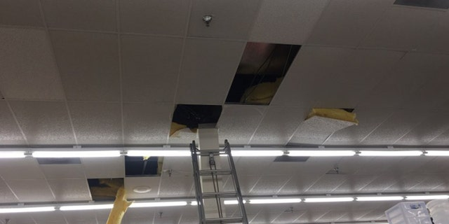 Investigators said when a manager told Kristina Perkins police were on the way, she crawled through the Big Lots ceiling for hours.