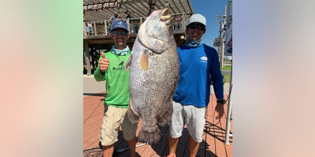 Jorgensen and Blake Rigby with the massive tripletail at Cypress Cove Marina.