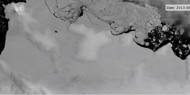 Satellite images show polynyas (open-water regions) forming at the ends of basal channels beneath shear margins of the East Getz Ice Shelf.