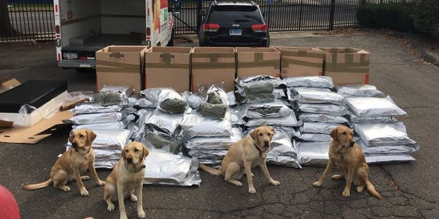Police K-9pose with seized marijuana from their big traffic bust Friday on I-95.