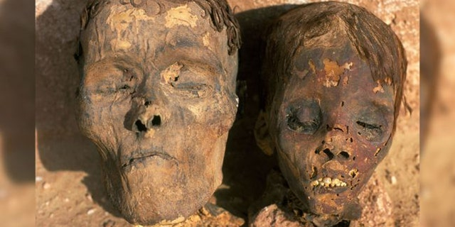 One of the mummies that provided arterial samples came from Dakhla Oasis in Egypt, as did the mummies pictured here. (Credit: Alamy)