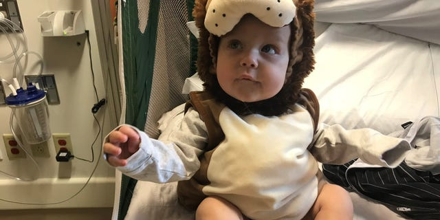 Westlake Legal Group sean-1 Rhode Island mom who lost son, 1, to cancer asking for Halloween-themed rocks for boy's grave Madeline Farber fox-news/health/healthy-living/childrens-health fox-news/health/cancer/blood-cancer fox-news/health/cancer fox news fnc/health fnc e0549891-9772-533d-8434-9bbce1dcdbac article /FOX NEWS/LIFESTYLE/OCCASIONS/Holiday