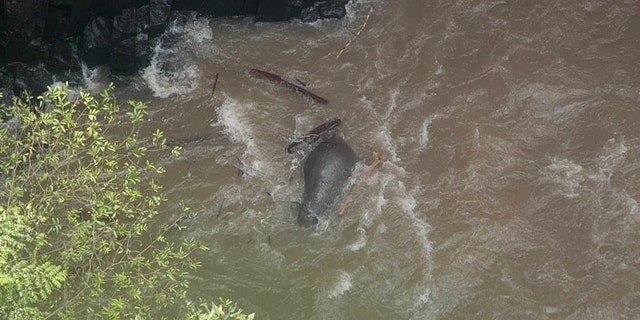 This photo taken by the Thailand Department of National Parks on October 5, 2019 shows a dead elephant at the bottom of a waterfall after it fell to its death at Khao Yai National Park in central Thailand.
