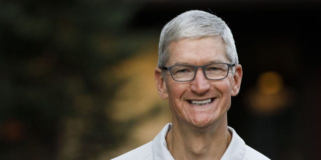 Tim Cook, chief executive officer of Apple Inc., is seen above. (Bloomberg via Getty Images)