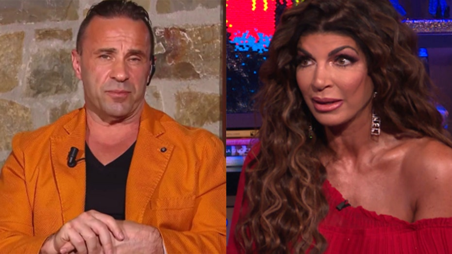 'Real Housewives' star Joe Giudice says daughters with ex Teresa are 'truly perfection'