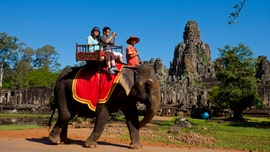 Cambodia bans elephant rides at popular Angkor Wat park