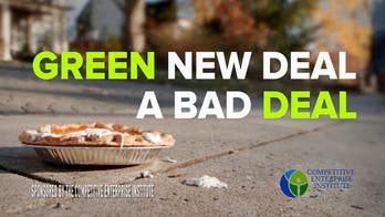 Group to air Thanksgiving-themed ad knocking Green New Deal before Dem debate