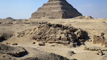 A lion mummy may have been discovered at famed pyramid site