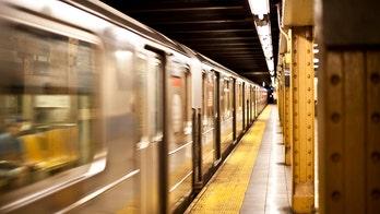 New York City man stabbed, pet dog slashed in subway station, police say