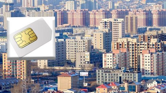 Mongolia arrests 800 in cybercrime probe