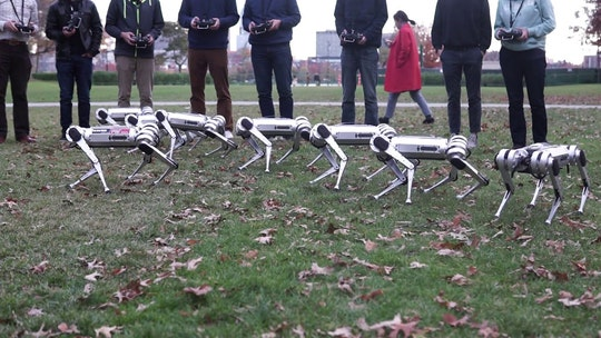 MIT's 'virtually indestructible' Cheetah robots can now play soccer