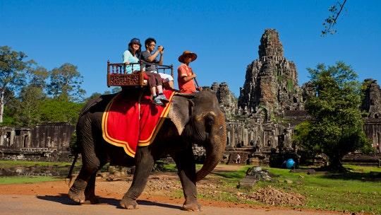 Cambodia bans elephant rides at popular Angkor Wat park