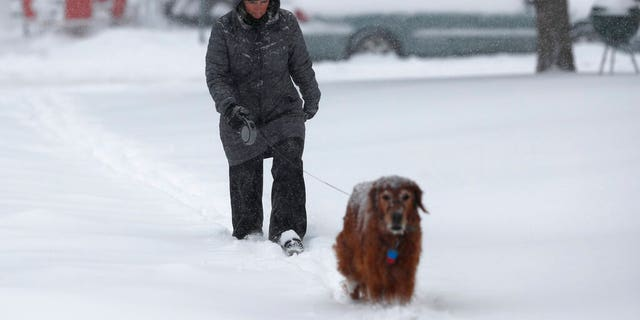 Pam Semmler walks her 10-year-old Golden retriever named Summit as a storm packing snow and high winds sweeps in over the region Tuesday, Nov. 26, 2019, in Denver.