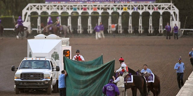 Track workers treat Mongolian Groom after the Breeders' Cup Classic horse race at Santa Anita Park, Saturday, Nov. 2, 2019, in Arcadia, Calif. (Associated Press)