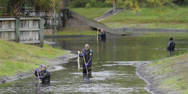 Law enforcement investigators search the small retention pond near the entrance of the Southside Villas apartment complex in Jacksonville on Nov. 6 for Taylor Williams.