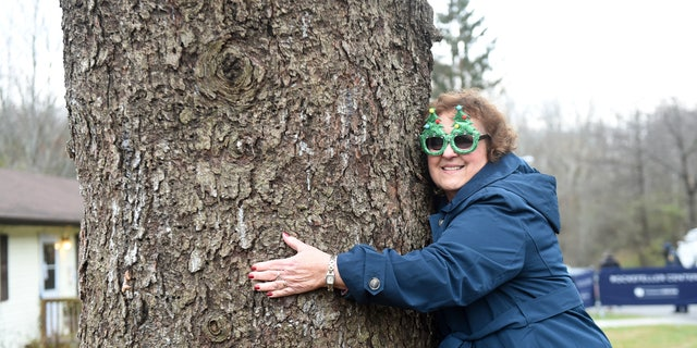 Carol Schultz hugged the trunk of a 77-foot tall Norway Spruce that she donated to serve as this year's Rockefeller Center Christmas tree.