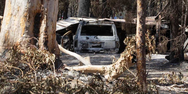 Damage caused by bushfire is seen at resident Brian Williams' resort at Lake Cooroibah Road in Noosa Shire, Queensland, Australia, Monday, Nov. 11, 2019.