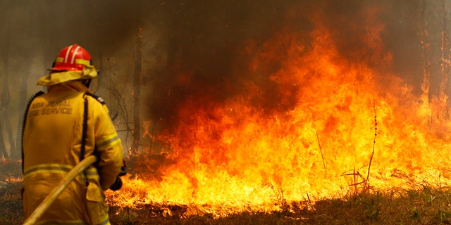Firefighters work to contain a bushfire along Old Bar road in Old Bar, Saturday, Nov. 9, 2019.