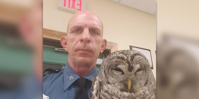 Westlake Legal Group Marine-State-Trooper-Owl-2 Maine owl gets lift in state trooper's patrol car after rescue Robert Gearty fox-news/us/us-regions/northeast/maine fox-news/us/crime/police-and-law-enforcement fox-news/science/wild-nature/birds fox-news/odd-news fox-news/good-news fox news fnc/us fnc article 9a812e56-b201-502f-a0c2-ec3c03a84c67