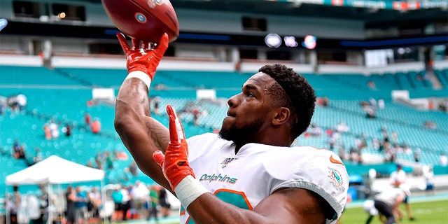 The Miami Dolphins released suspended running back Mark Walton on Tuesday, hours after he was arrested on charges of punching his pregnant girlfriend in the head. (Steve Mitchell-USA TODAY Sports, File)