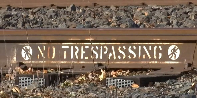 The teenager was struck and killed by a freight train at 6 p.m. on Saturday, according to officials.