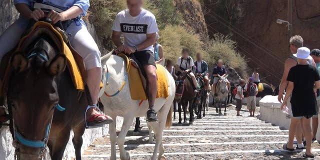 On Wednesday, PETA Germany shared new video footage to YouTube of the equines trudging up and down the 500 steps from Santorini's port to the city of Fira, carrying visitors in ill-fitting tack.